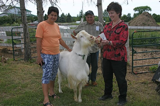 Marta Suarez Ramirez, Juan Sanchez Martell and Barb Wicks with prize billy goat, Grass Hill Farm.